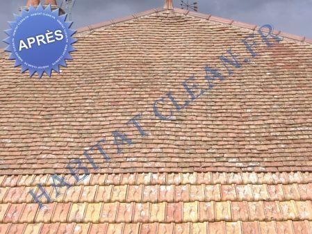 Produit traitement toiture anti mousse