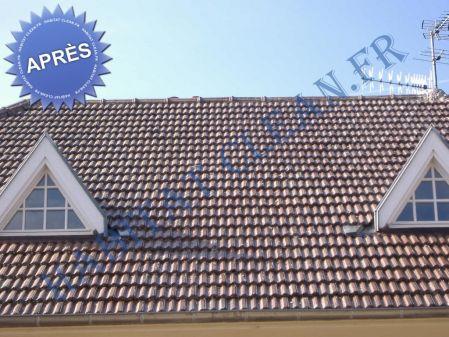 produit traitement toiture anti mousse isolation sous toiture garage