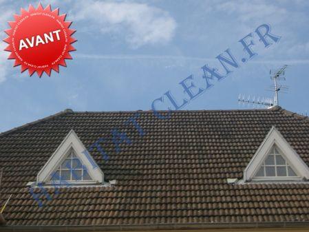 Produit professionnel nettoyage toiture