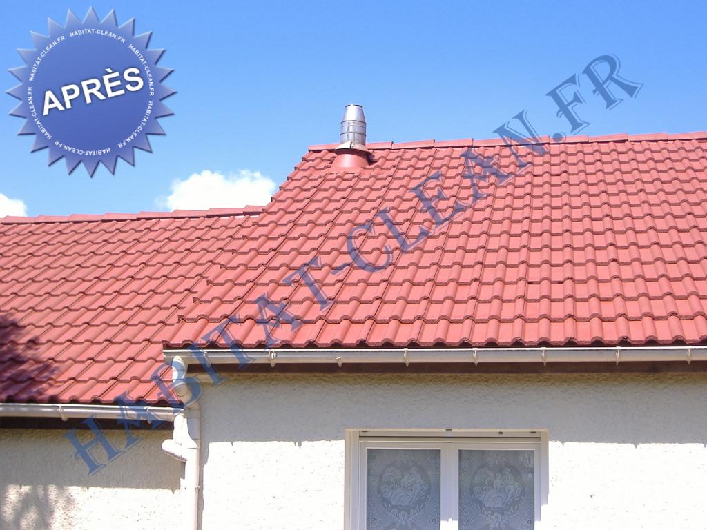 peinture toiture tuile fibro beaune 21 chalon 71. Black Bedroom Furniture Sets. Home Design Ideas